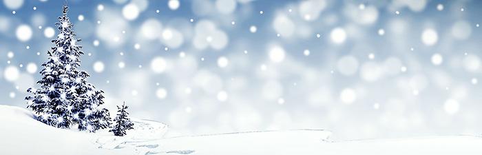Schneelandschaft mit Tanne
